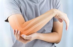 Articolazione, ossa e cartilagine