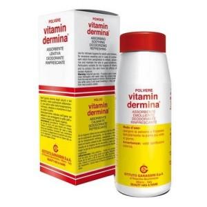Vitamindermina Polvere 100g